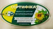 Семена подсолнечника Бенето (A-F) Днепр
