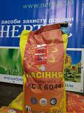 Продам семена подсолнечника нсх -6044 OR-6+ Новисад Сербия Синельниково