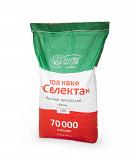 Насіння гібридів кукурудзи Полтава Киев