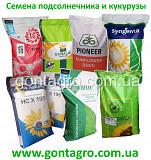 Семена подсолнечника устойчивого гербициду Гранстар и Евролайтинг 7 рас заразихи, семена кукурузы ук Харьков