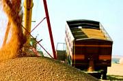 Перевезення зернових по Україні Винница