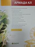 Купити насіння соняшнику Армада КЛ. Николаев