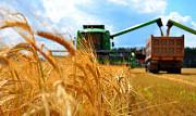 Перевезення зерна і зернових вантажів по Україні Винница