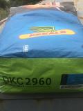 Семена кукурузы Monsanto ДКС 2960 ФАО 250 Киев