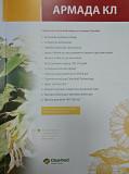 Купить семена подсолнечника Армада КЛ Киев