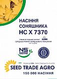 Насіння соняшнику НС Х 7370 СУМО Киев