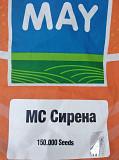 Купить семена подсолнечника Сирена МС. Киев
