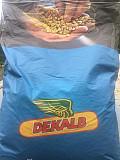 Насіння кукурудзи Монсанто Киев