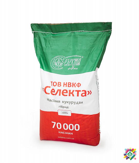 """Гібрид кукурудзи """"Купава"""" F1 ФАО 320"""