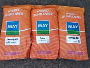 Купити насіння соняшника недорого. Киев