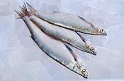 Продажа свежевыловленной рыбы оптом Днепр