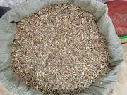 Куплю отходы, некондицию сои и кукурузы Днепр