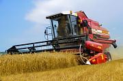Уборка зерновых. Услуги комбайнов. Запорожье