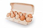 Яйцо куриное мелким и крупным оптом Днепр Днепр