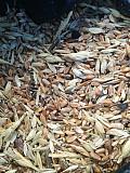 Закупка зерноотходы, некондиция зерновых, масличных, бобовых Сумы
