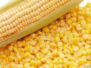 Куплю кукурудзу Лохвица