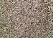 Зерновідходи, некондиція, бите зерно, зерносуміші. Закуповуємо дорого. Сумы