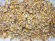Закупівля зернових, бобових. Закупівля некондиції, зерновідходів Сумы