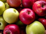 Закуповуємо яблука Полтава