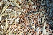 Закупаем все зерновые, некондицию, зерноотходы Харьков