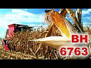Насіння кукурудзи ВН 6763 (ВНІС) Киев