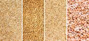 Куплю зерно, Зерновідходи, некондицію Черкассы