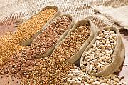 Зерносмеси, зерноотходы, зерновые куплю Киев