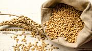 Куплю зернові, зерновідходи. Будь-які варіанти Киев