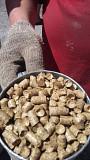Пеллеты из шелухи и пелеты соломы Черкассы