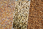 Зернові. Зерновідходи. Кукурудза. Пшениця. Соя. Черкассы