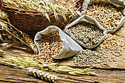 Пшеница, кукуруза, соя, подсолнечник. Закупка Кропивницкий