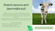 Продаєм вушні бирки для ВРХ, свиней та вівць Борисполь