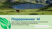 Система забору крові (шприц-пробірка) Борисполь