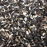 Отходы подсолнечника куплю Житомир