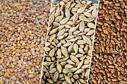 Зерновідходи зернові, олійні, бобові Киев