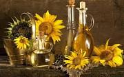 Купить масло растительное происхождения Украина. Одесса