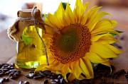 Масло растительное купить в Украине Полтава