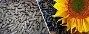 Подсолнечный шрот, зерновые, мука закупить в Украине Запорожье