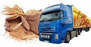 Транспортування зернових вантажів. Послуги зерновозів Киев