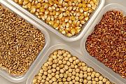 Закуповуємо ячмінь, пшеницю, горох, рапс Винница
