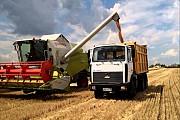 Перевозка зерна по Украине. Услуги зерновозов. Хмельницкий