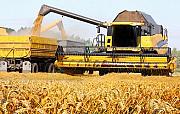 Перевезення зерна по Україні. Послуги зерновозів. Киев