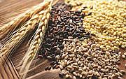 Постійно закуповуємо зерновідходи олійні, зернові, бобові! Кропивницкий