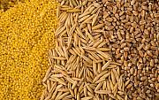 Куплю відходи кукурудзи, пшениці, сої, соняшнику, ячменю, проса Черкассы