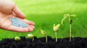 Семена, Агро Химия, СЗР, Удобрения для всех культур - Поле, Сад, Огород Мелитополь